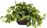 Nearly Natural Pothos With Decorative Vase Silk